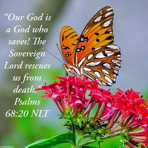 Psalms 68:20 NLT