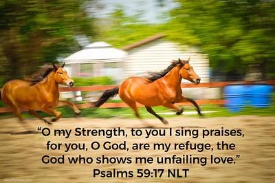 Psalms 59:17 NLT