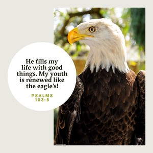 Psalms 103:5 NLT
