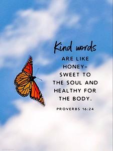 Proverbs 16:24 NLT