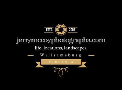 photography badge 02