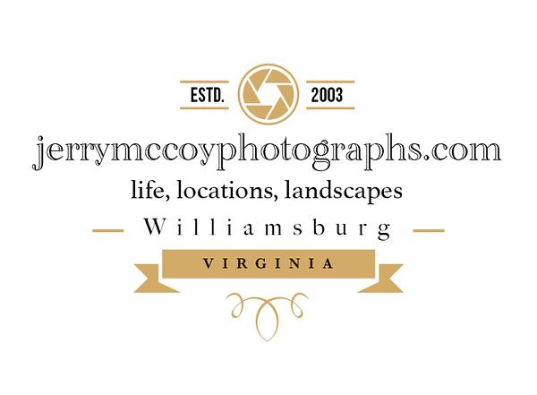 photography badge 02