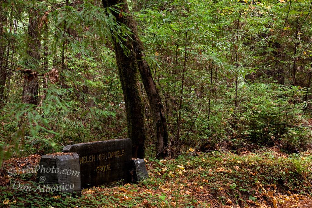 <center><em>Lie the tomb stones, Pleading remember me</em>