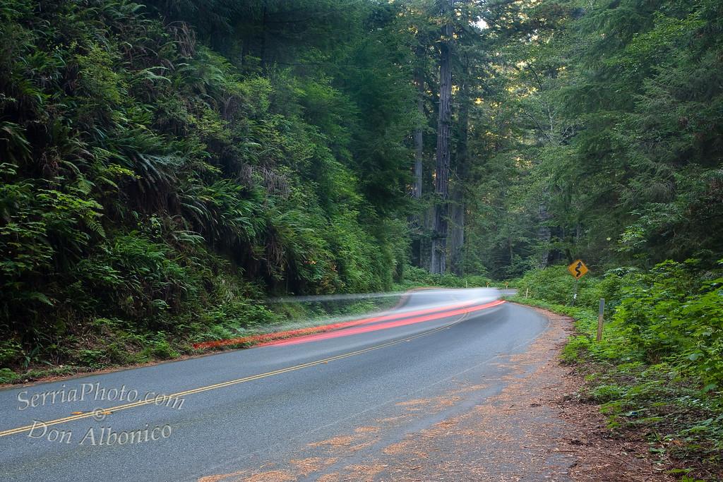 <center> <em>Along a ribbon of asphalt,</em>