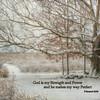 II Samuel 22:33