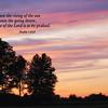 Praise - Psalm 113:3
