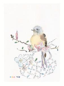 No 60 Le moucherolle et son panier de printemps