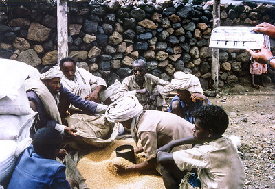 Filming of seed distribution to farmers in Wollo Province, Ethiopia, 1986