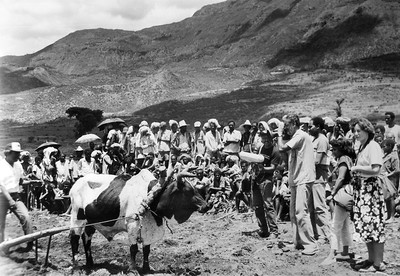 Cameraman  Mohinder Dhillon filming the 'One Cow' ploughing technique demonstration to farmers, Wollo, Ethiopia 1986
