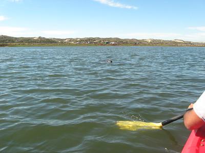 2016 10 Kayaking Offsite
