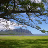 """Driving along the north shore of Oahu (but before arriving to the famed North Shore) - you can see the """"pali"""", the cliffs formed by eroded lava flows so typical of the main Hawai'ian Islands"""