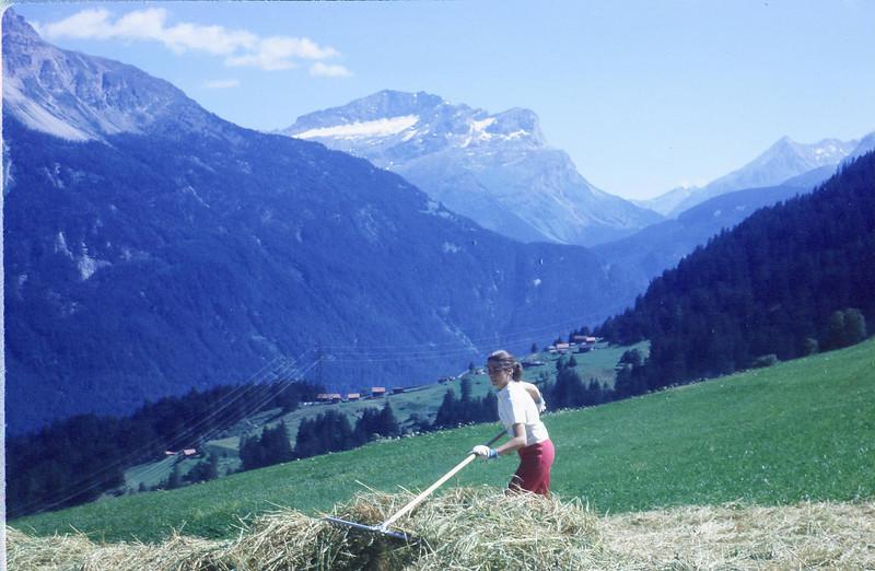 Kari Marilyn Mohn raking hay.