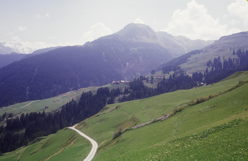 "Dad labeled this photo ""Countryside near Wergenstein Switzerland."""