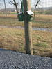 All the wetlands have attracted a substantial bird population.  Researchers from Cornell have installed birdhouses designed to attract particular species, and regularly visit the site to do bird and egg counts.
