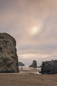 Facerock State Scenic Viewpoint, Bandon, Oregon