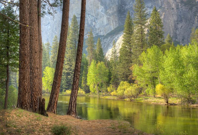 Yosemite, below El Capitan
