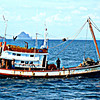 Thai Coastal Freighter