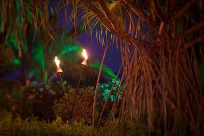Tiki Torches - Hawaii