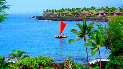 ZC_Earthnative_Hawaii_Kona_byTristanBayer_D43B6331
