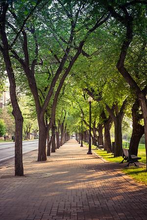 Saskatoon Sidewalk