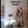 Husky How-To