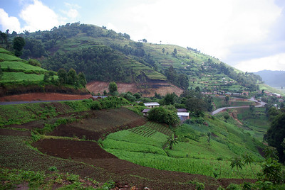 Kabale - Kisoro; scoria slopes