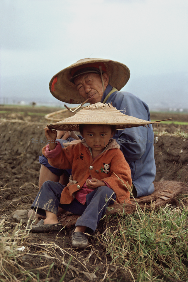 Tending a Young Seedling – China