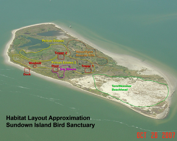 Outlined on this aerial view of Sundown Island taken in October 2007 by Andrew N. Smith are the approximate areas of the popular breeding grounds. In the following photos, the approximate location of the birds is noted.