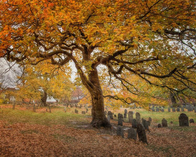 Old Burial Ground in Autumn, Salem, Massachusetts #autumn #fallfoliage #graveyards # cemeteries #salemwitchhunt