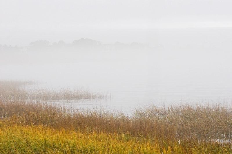 Towards the harbor with dense fog.