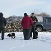 Hawes Sheepdogs 002