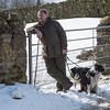 Hawes Sheepdogs 008