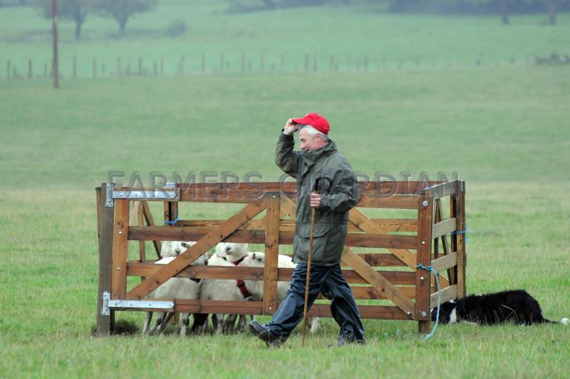 INTERNATIONAL SHEEPDOGS KIMNEL PARK 2008