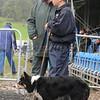 INTERNATIONAL SHEEPDOGS KInmEL PARK 2008