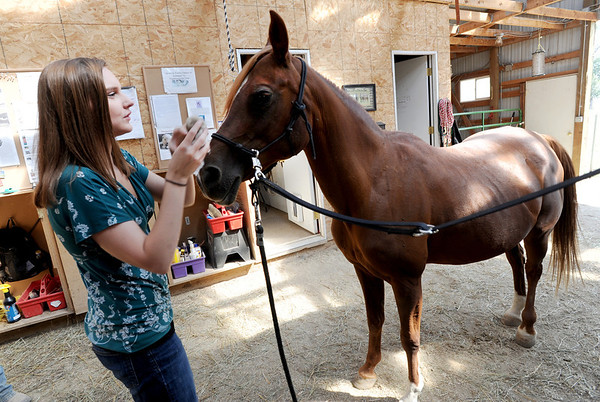 "Sarah Brock preps Karma the horse for riding at Gateways to Transformation Farm in Longmont.<br /> For more photos and a video of riding, go to  <a href=""http://www.dailycamera.com"">http://www.dailycamera.com</a>.<br /> Cliff Grassmick  / August 31, 2012"