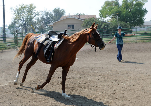 """Sarah Brock works with Karma the horse at Gateways to Transformation Farm in Longmont.<br /> For more photos and a video of riding, go to  <a href=""""http://www.dailycamera.com"""">http://www.dailycamera.com</a>.<br /> Cliff Grassmick  / August 31, 2012"""