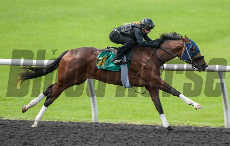 Hip61 Cairo Prince- Motel Lass  work 20.2      @ OBS 2yrs old sales . in Ocala   Jun 7 th 2018.<br />   © Joe DiOrio/Winningimages.biz