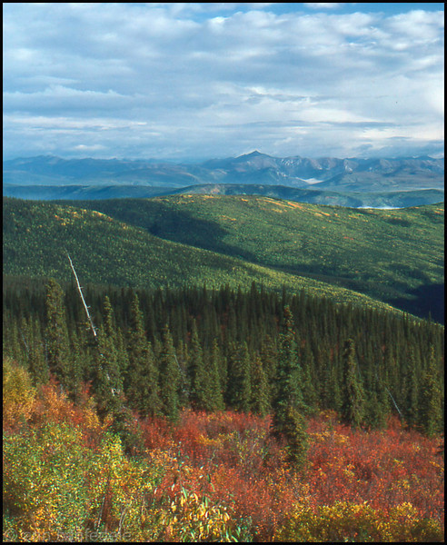 From the Top-of-the-World highway in the Yukon