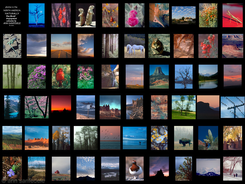 """This is a """"stained glass window"""" display of all 59 photos in this gallery.... in the order they were printed in the calendar."""
