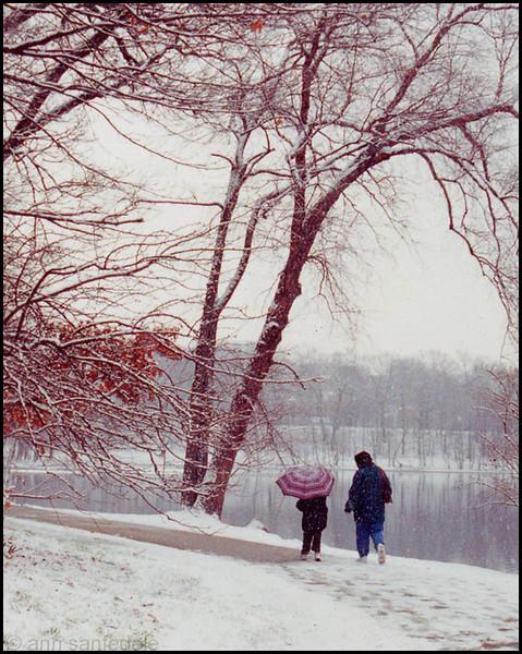 Jamaica Pond - Brookline, Massachusetts