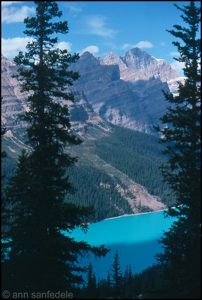 From the Peyto Lake overlook along the Ice Fields Parkway, Alberta
