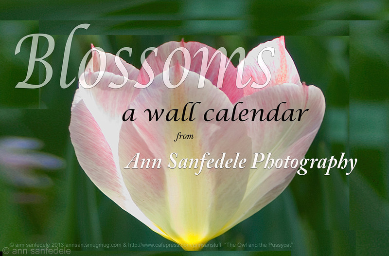 BLOSSOMS  calendar cover -- new calendar for 2014