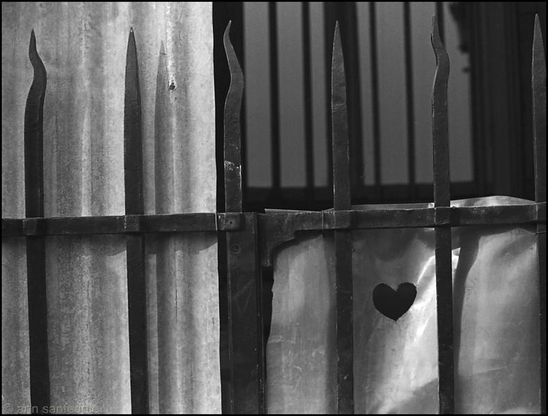 prisoneroflove2719a