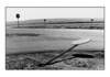 New Mexico, 1990