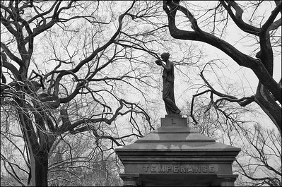 Temperance Statue in Tompkins square park February, 2016
