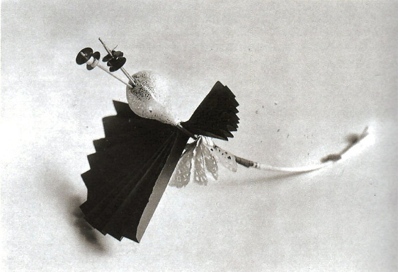 Photograph of Decorative Flower