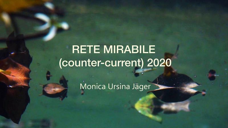 RETE MIRABILE (counter-current) Filmstill