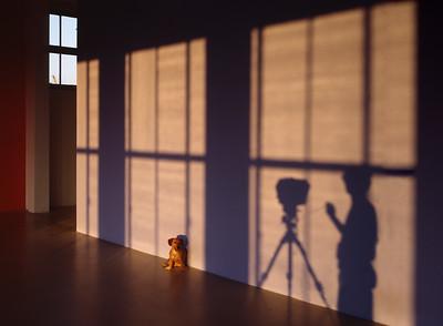 Hond, Selfie, T.C. Ektachrome