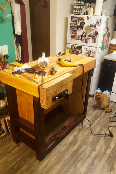 The bench finally comes together! This was a nice finish to the first chapter of the bench, and I'm already finding the work a lot easier now that I have a workbench to do it on. Now on to some of the details!
