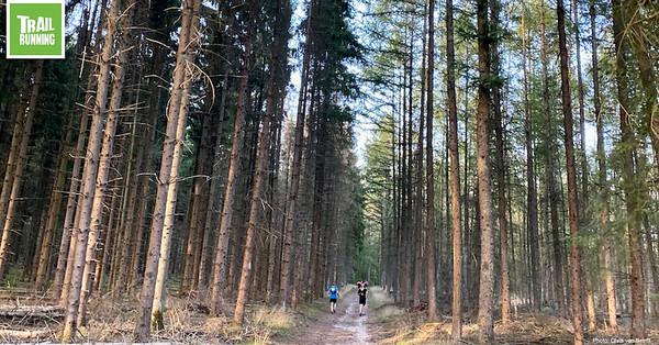 Trailrunning Activiteiten 1280x800